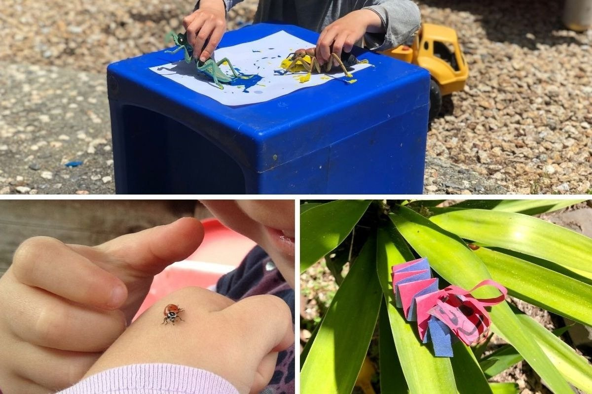 insect activities for preschoolers